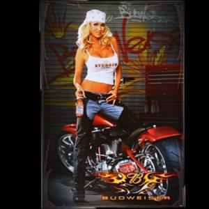 Budweiser-Biker-Babe-2005-Sturgis-Bike-Week-Big-Dog-Motorcycle-Poster