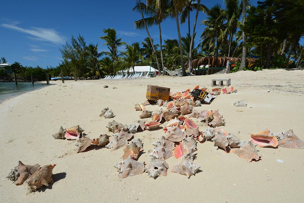 Guana Cay Island by MOTO-MG 21